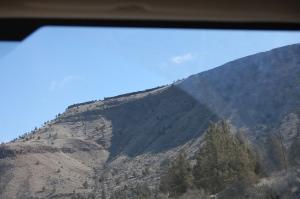 The hills around Madras Oregon