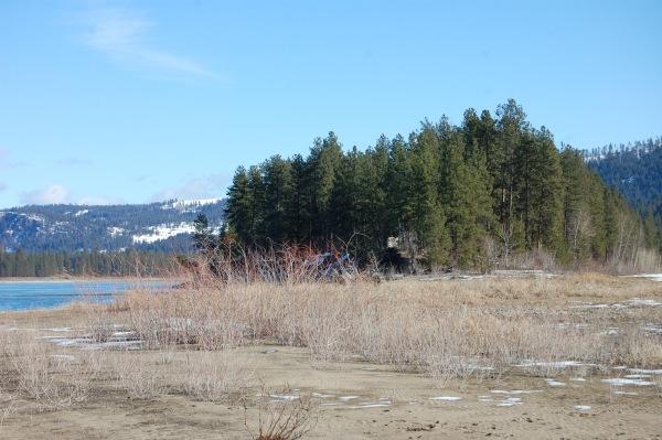 Dried marshy area for a brisk stroll ...