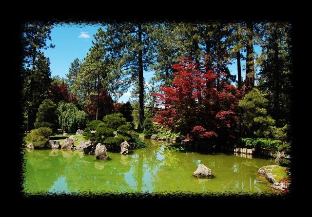 Garden0006