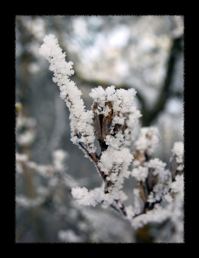 winter102